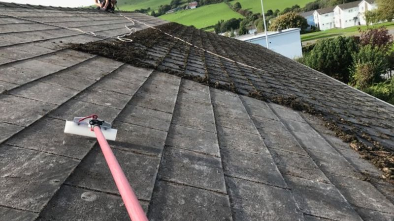 roof cleaning swansea